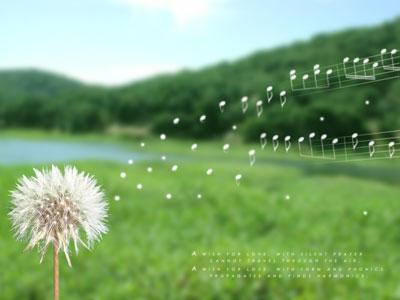 cau-chuyen-cuoc-song (43)
